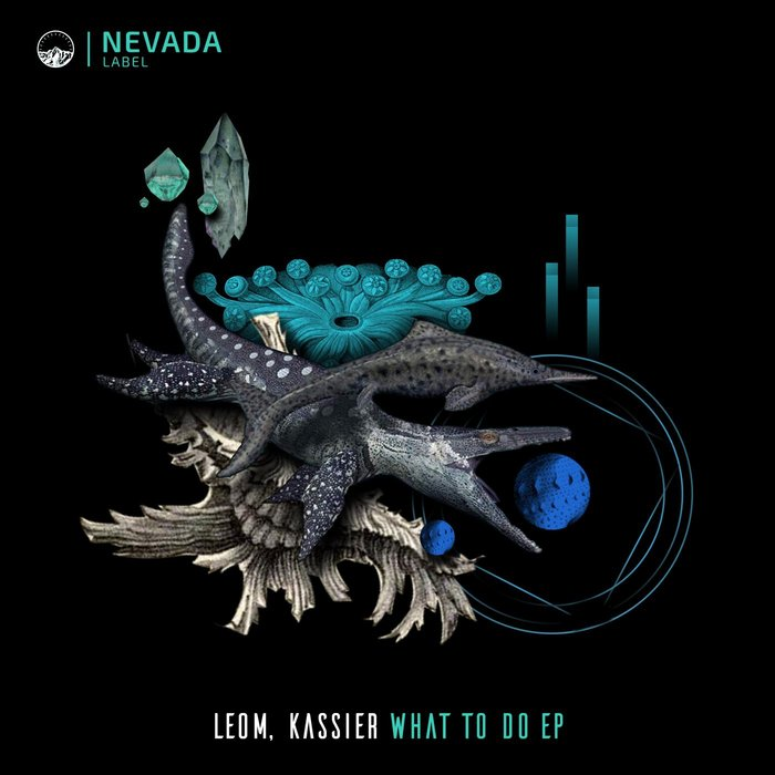 KASSIER/LEOM - What To Do EP