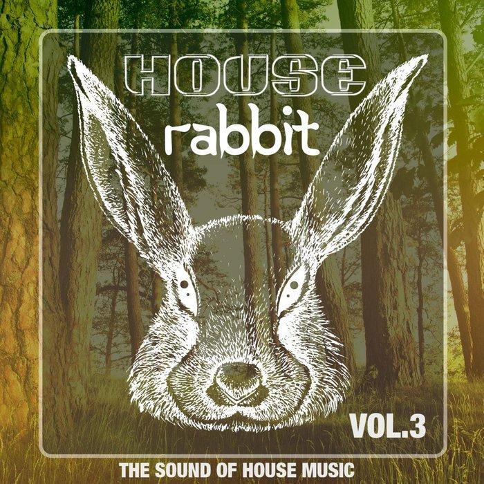 VARIOUS - House Rabbit Vol 3