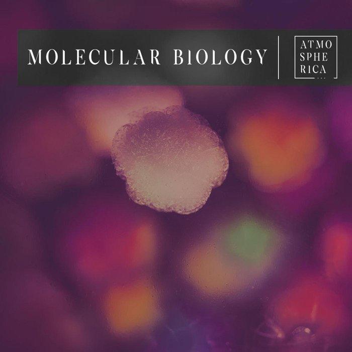 VARIOUS - Molecular Biology