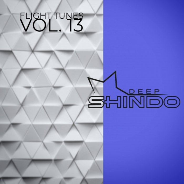 VARIOUS - Flight Tunes Vol 13