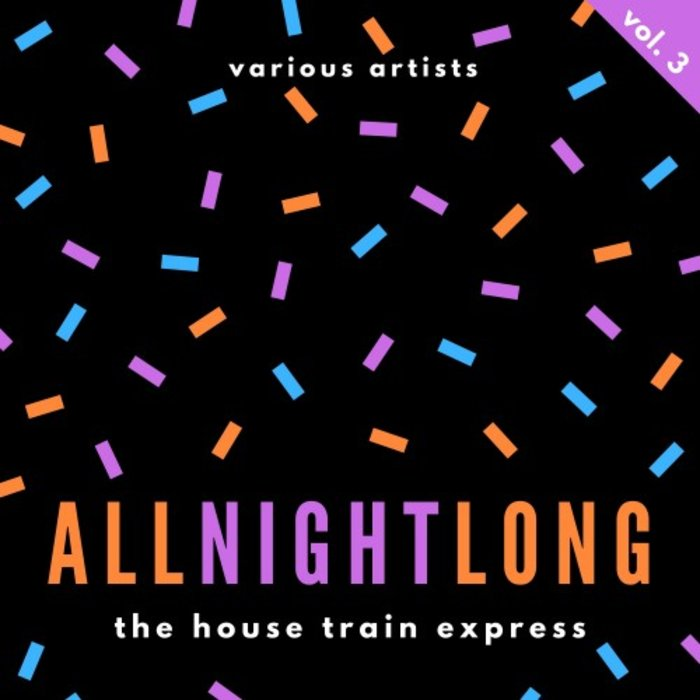 VARIOUS - All Night Long (The House Train Express) Vol 3
