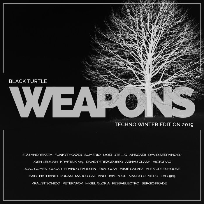 VARIOUS - Black Turtle Weapons Techno Winter Edition 2019