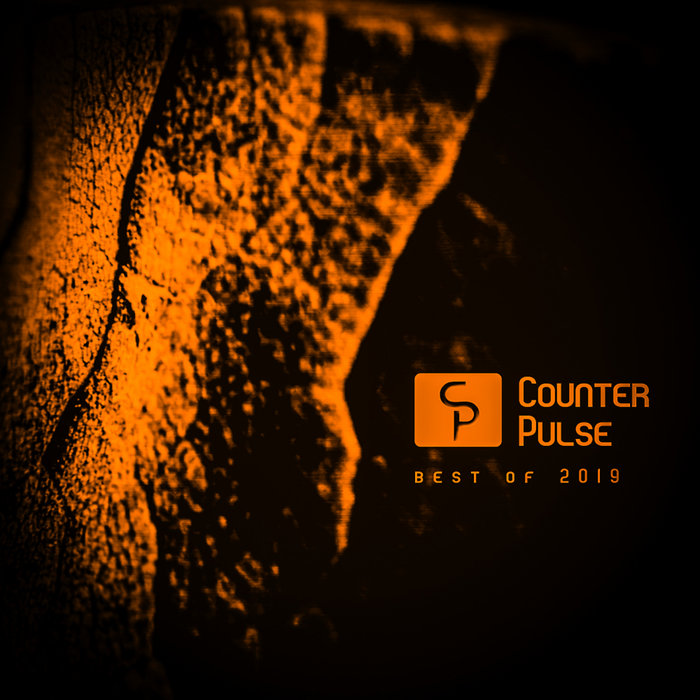 VARIOUS - Counter Pulse/Best Of 2019