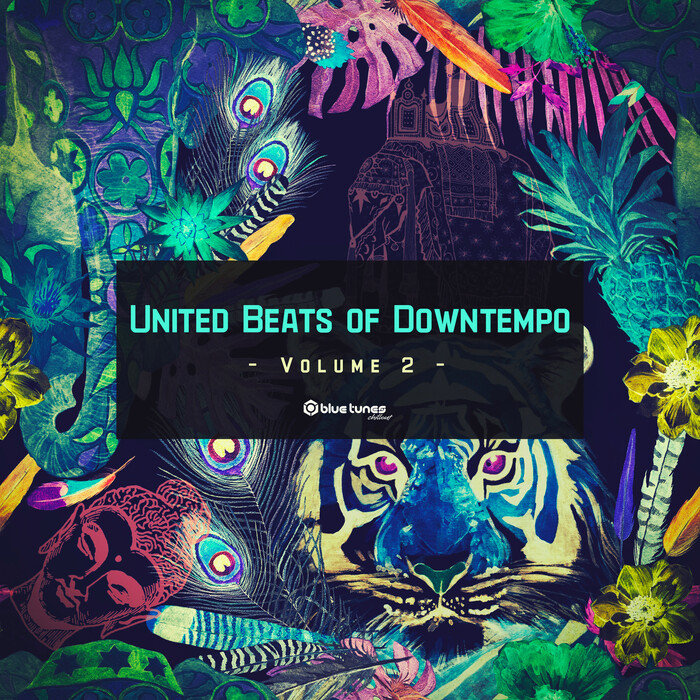 VARIOUS - United Beats Of Downtempo Vol 2