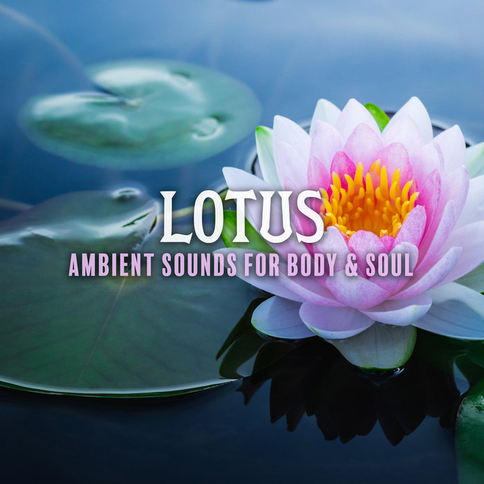 VARIOUS - Lotus: Ambient Sounds For Body & Soul