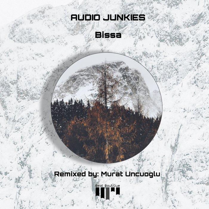 AUDIO JUNKIES - Bissa
