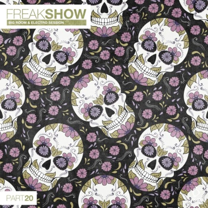 VARIOUS - Freak Show Vol 20 - Big Room & Electro Session