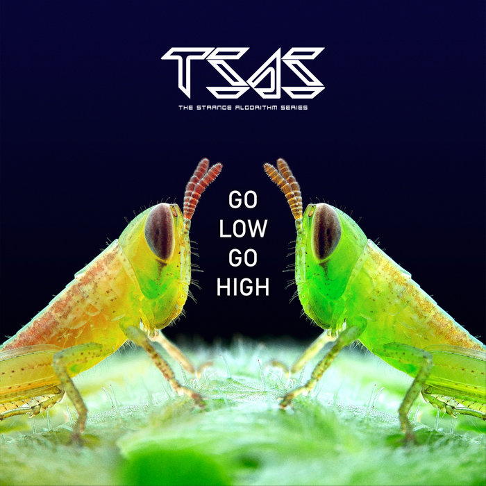 THE STRANGE ALGORITHM SERIES - Go Low Go High