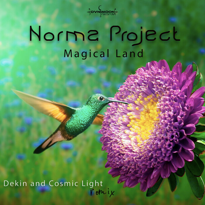 NORMA PROJECT - Magical Land