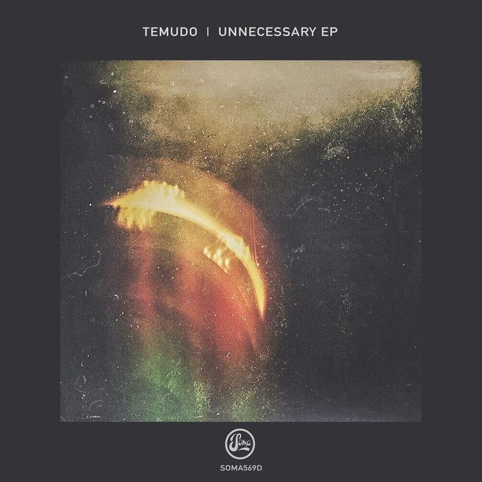 TEMUDO - Unnecessary EP