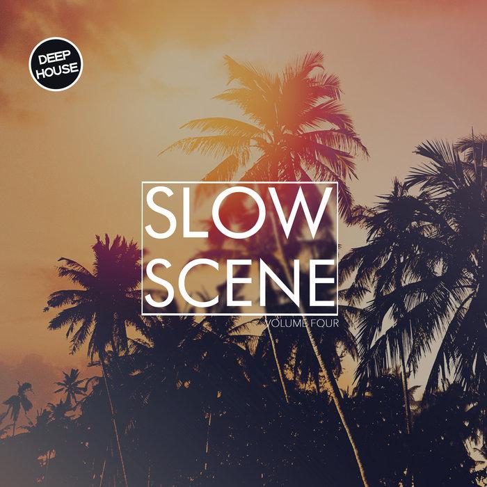 VARIOUS - Slow Scene Vol 4