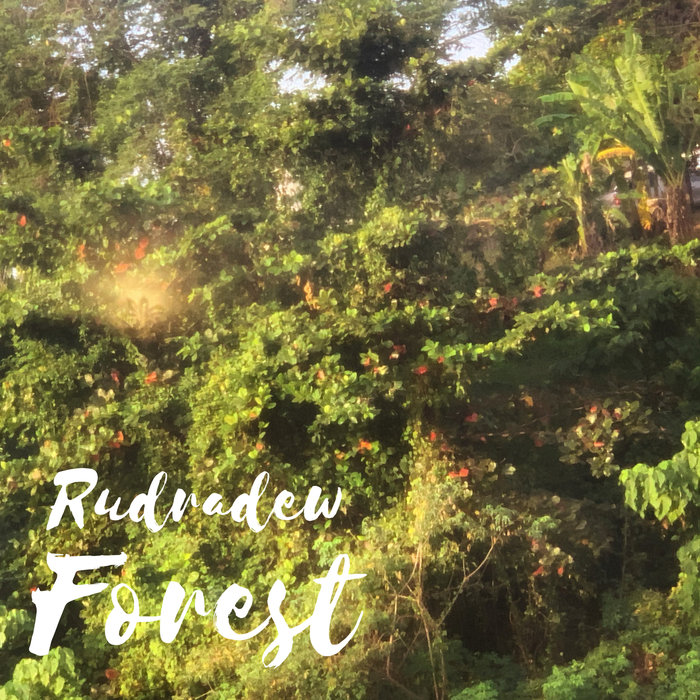 RUDRADEW - Forest