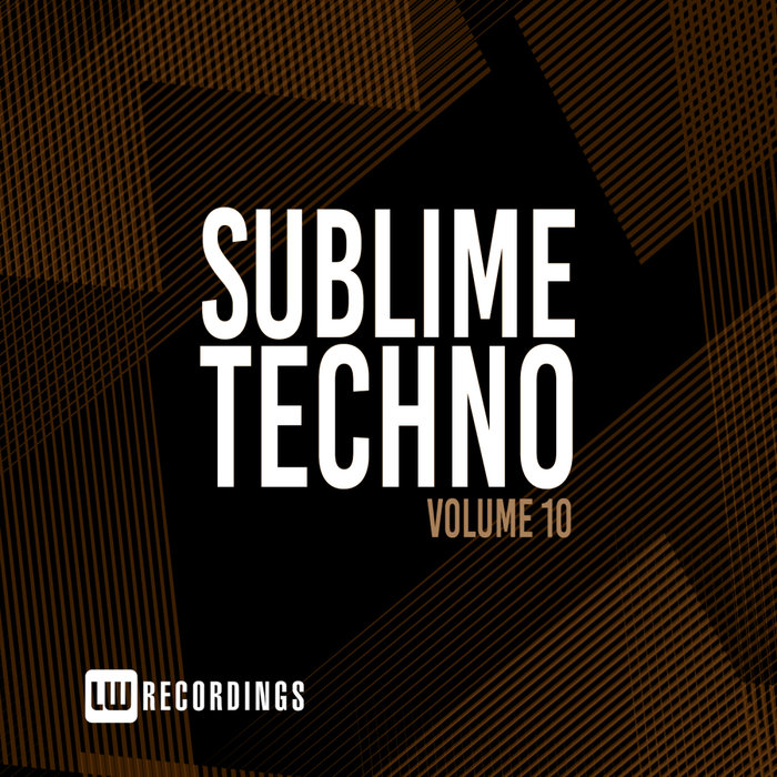 VARIOUS - Sublime Techno Vol 10