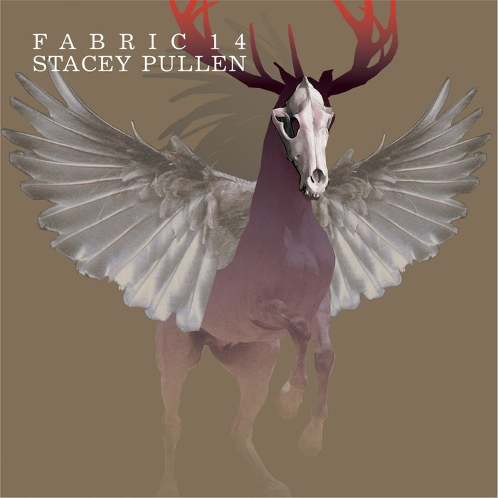 VARIOUS - Fabric 14/Stacey Pullen