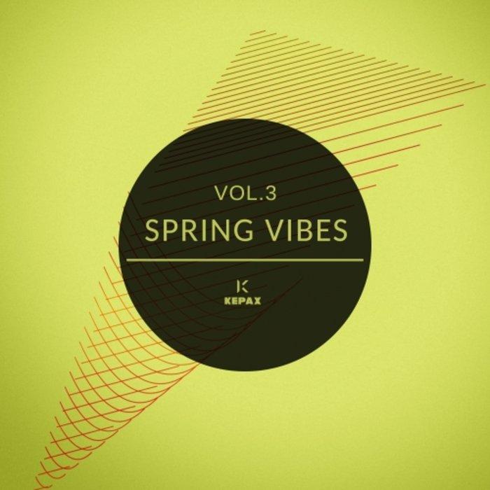 VARIOUS - Spring Vibes Vol 3