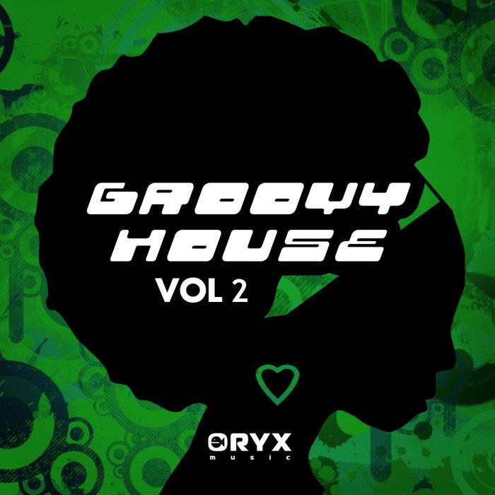 VARIOUS - Groovy House Vol 2