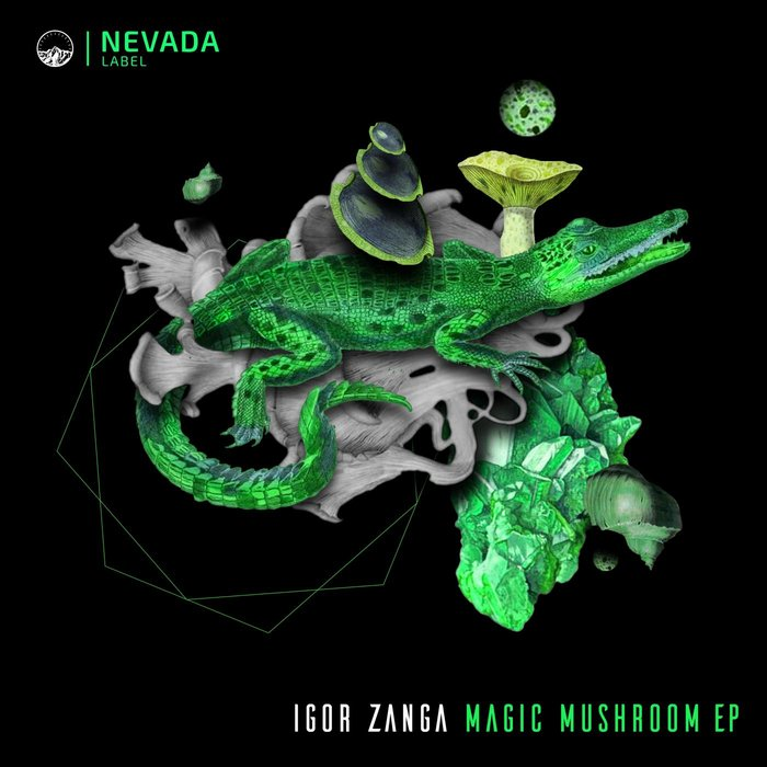 IGOR ZANGA - Magic Mushroom EP
