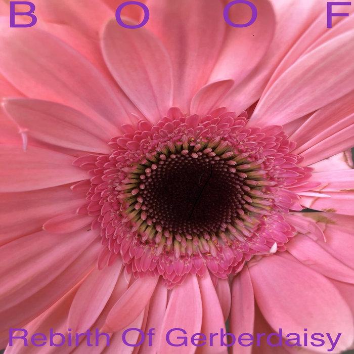 BOOF - Rebirth Of Gerberdaisy