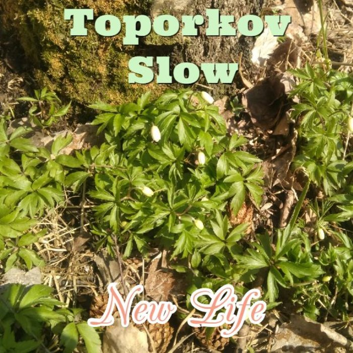 TOPORKOV SLOW - New Life