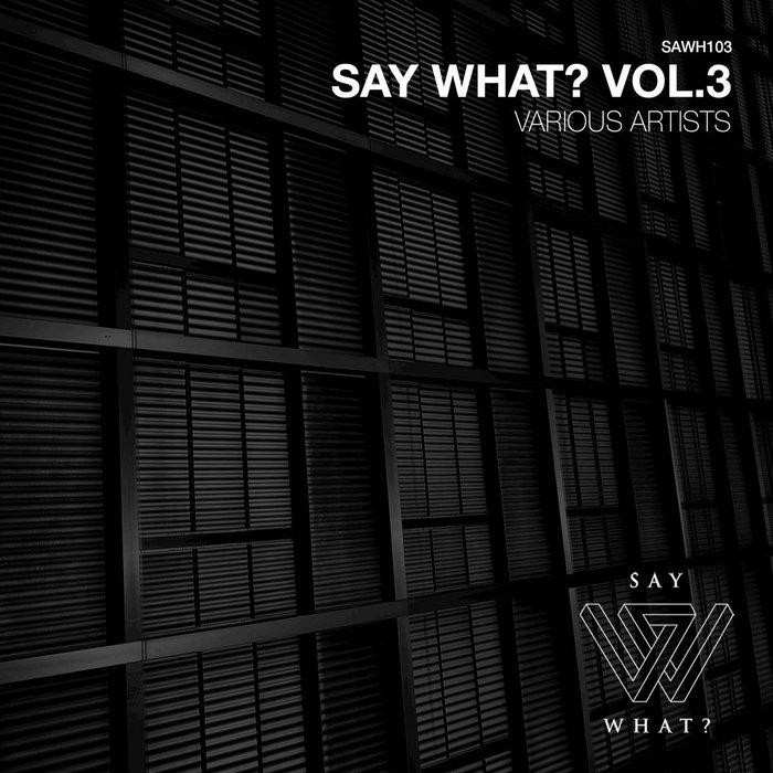 FELIX SPRINGEL/FRACTIOUS/FREAK UNIQUE/GERO JANSEN/AM TO PM/OCHERII/SOKO/SEV - Say What? Vol 3
