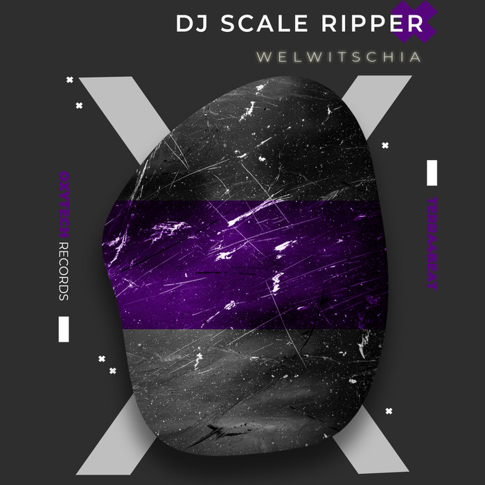 DJ SCALE RIPPER - Welwitschia