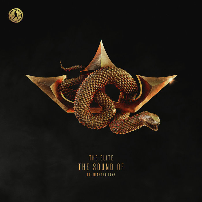 COONE/DA TWEEKAZ/HARD DRIVER feat DIANDRA FAYE - The Sound Of (Extended Mix)