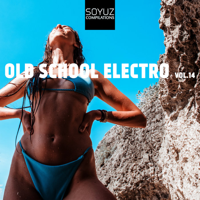 VARIOUS - Old School Electro Vol 14