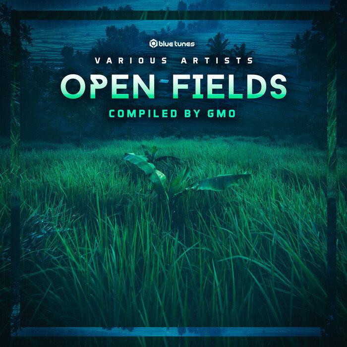 VARIOUS - Open Fields