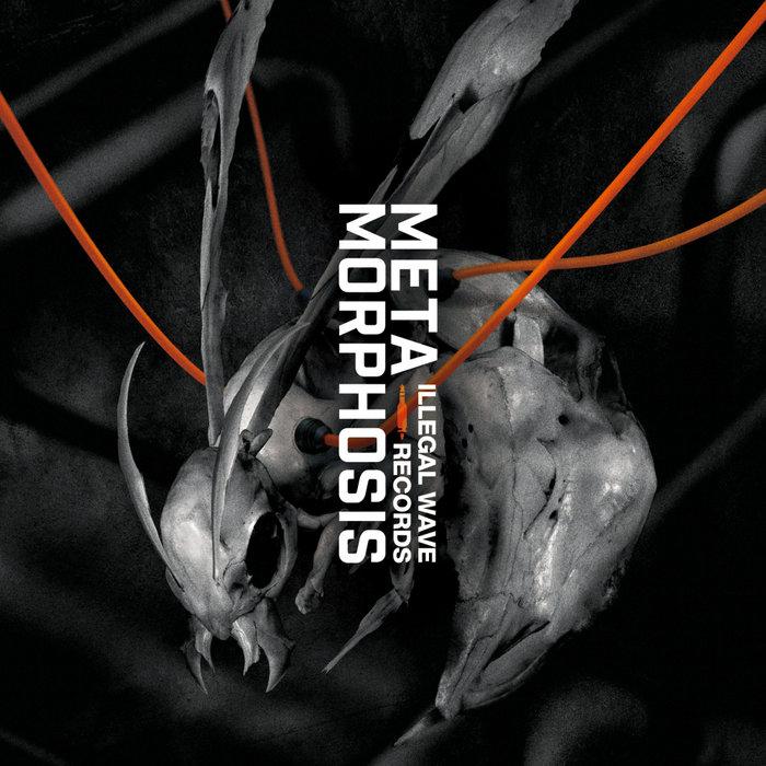 VARIOUS - METAMORPHOSIS