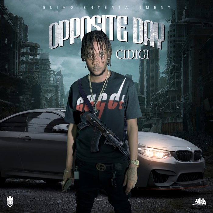 CIDIGI - Opposite Day