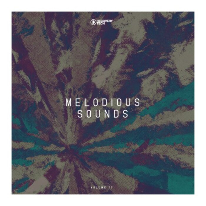 VARIOUS - Melodious Sounds Vol 17