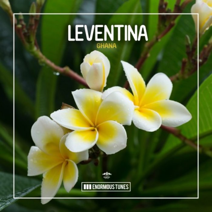 LEVENTINA - Ghana