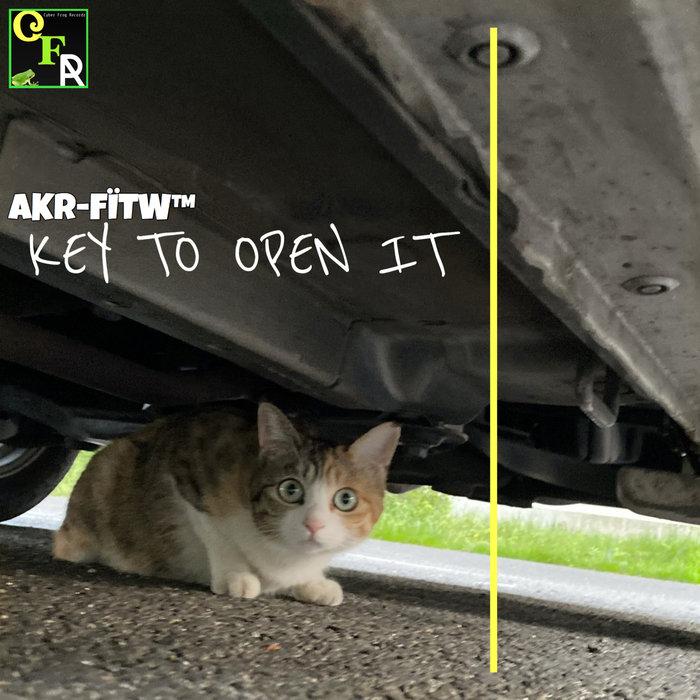 AKR-FITW - Key To Open It