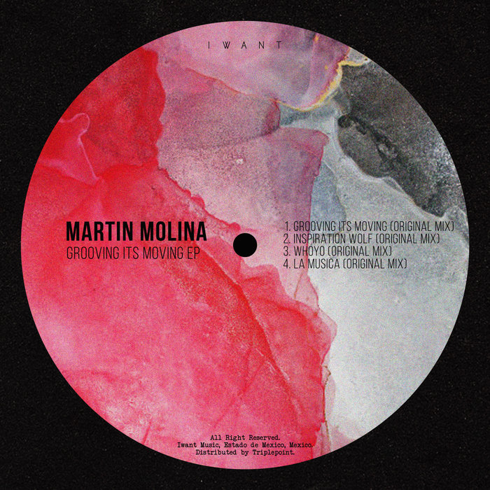 MARTIN MOLINA - Grooving It's Moving EP