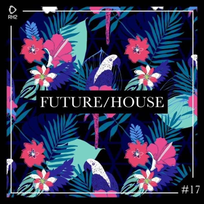 VARIOUS - Future/House #17