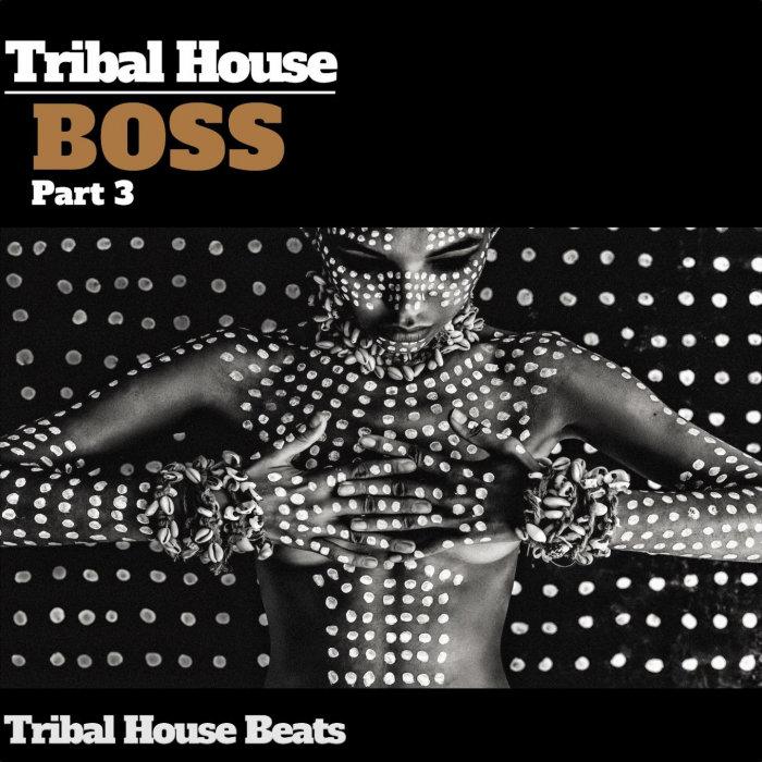 VARIOUS - Tribal House Boss Pt 3 (Tribal House Beats)