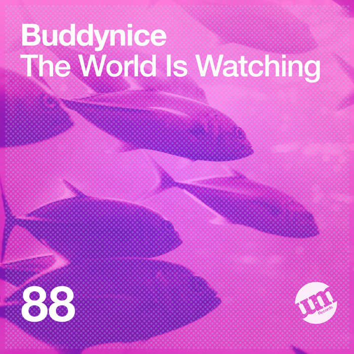 BUDDYNICE - The World Is Watching