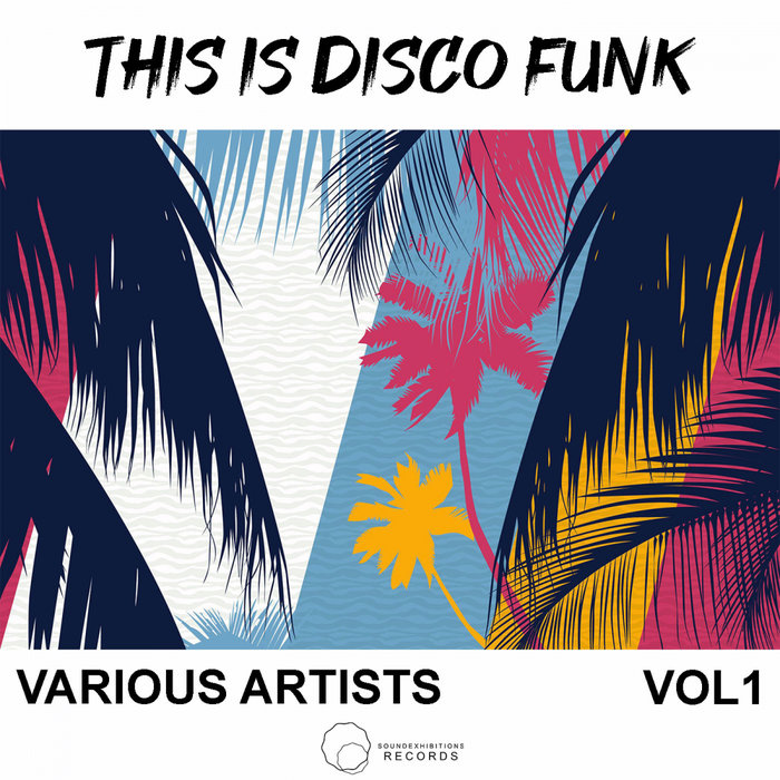 VARIOUS - This Is Disco Funk Vol 1