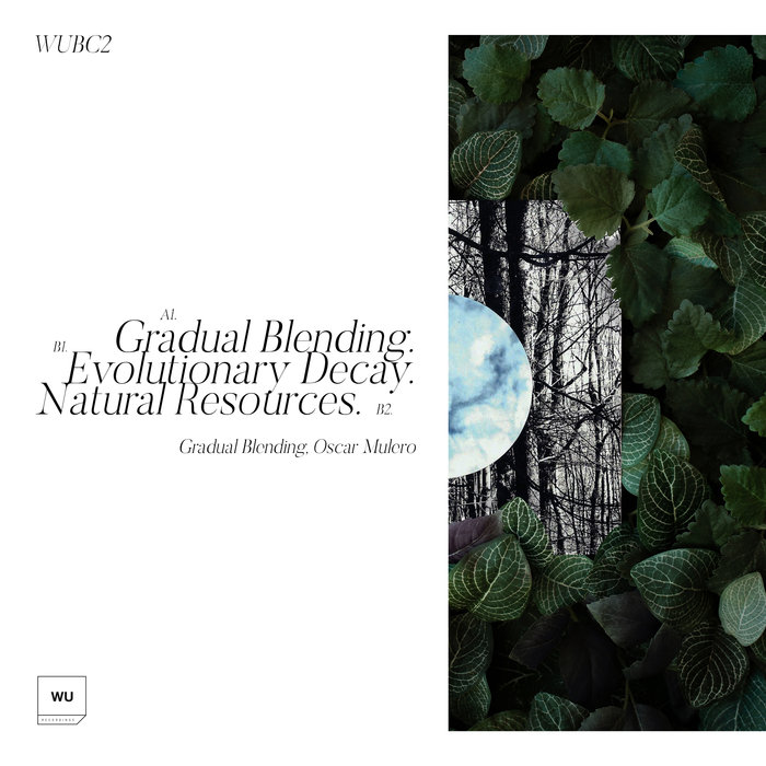 OSCAR MULERO - Gradual Blending EP