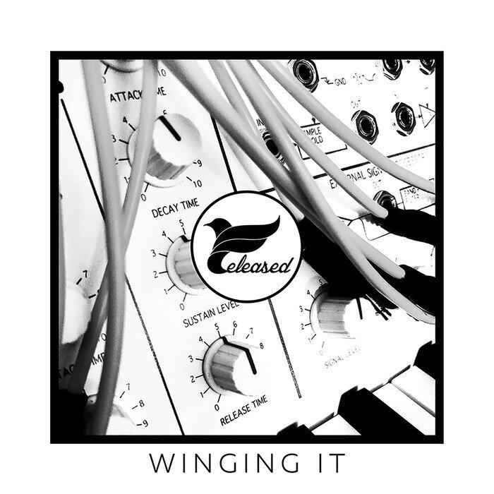 VARIOUS - Winging It