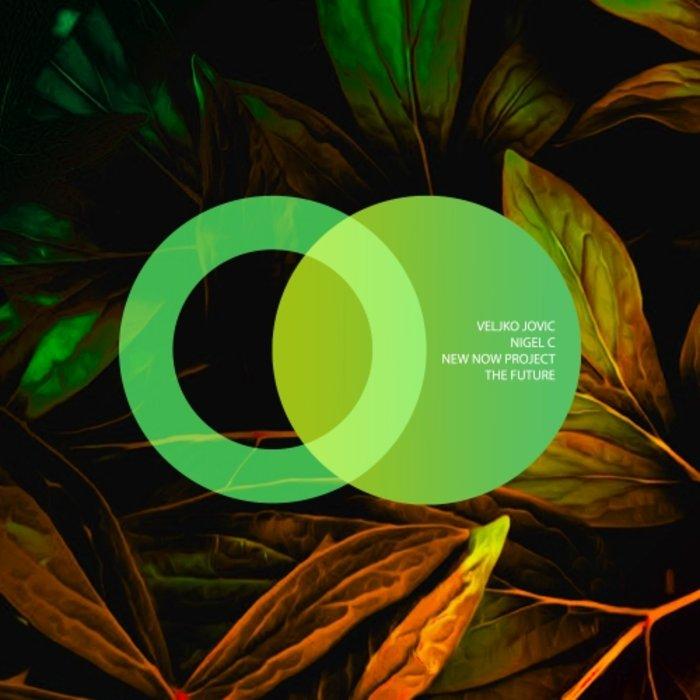 VELJKO JOVIC/NIGEL C/NEW NOW PROJECT - The Future