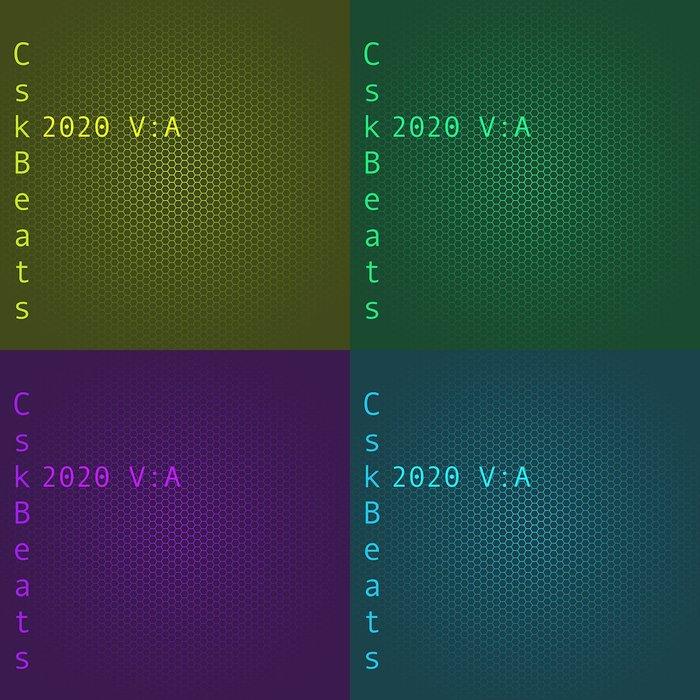 VARIOUS - 2020 V: A