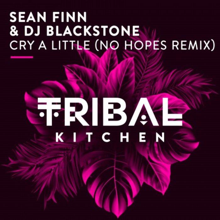 SEAN FINN/DJ BLACKSTONE - Cry A Little (No Hopes Remix)