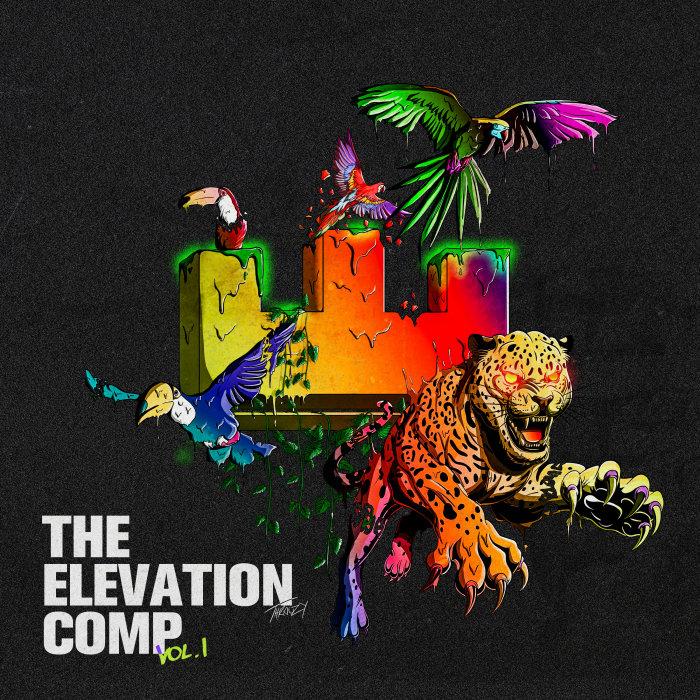 VARIOUS - The Elevation Comp Vol 1 (Explicit)