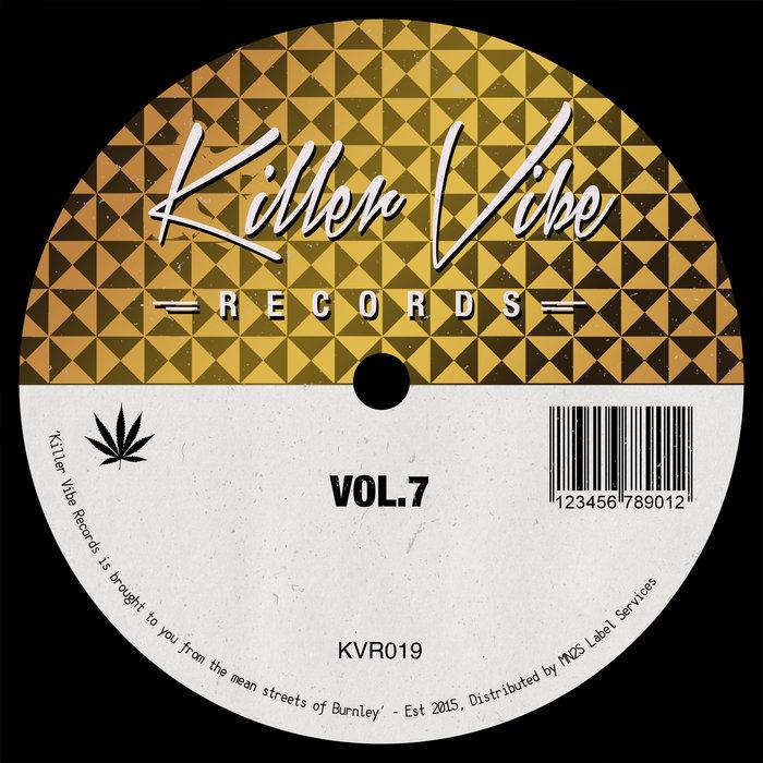 ARUN VERONE/DIEGO ARENAS/DINYAD ALONZO/RAISTRICK/SIMONE ELLIS/SUBDODO - Vibes Vol 7