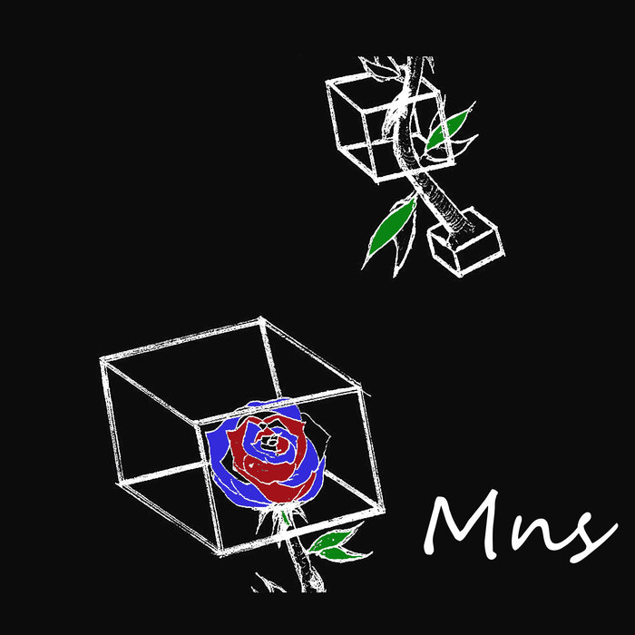 MNS - Tropical Maze