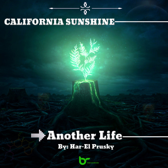 CALIFORNIA SUNSHINE (HAR-EL) - Another Life