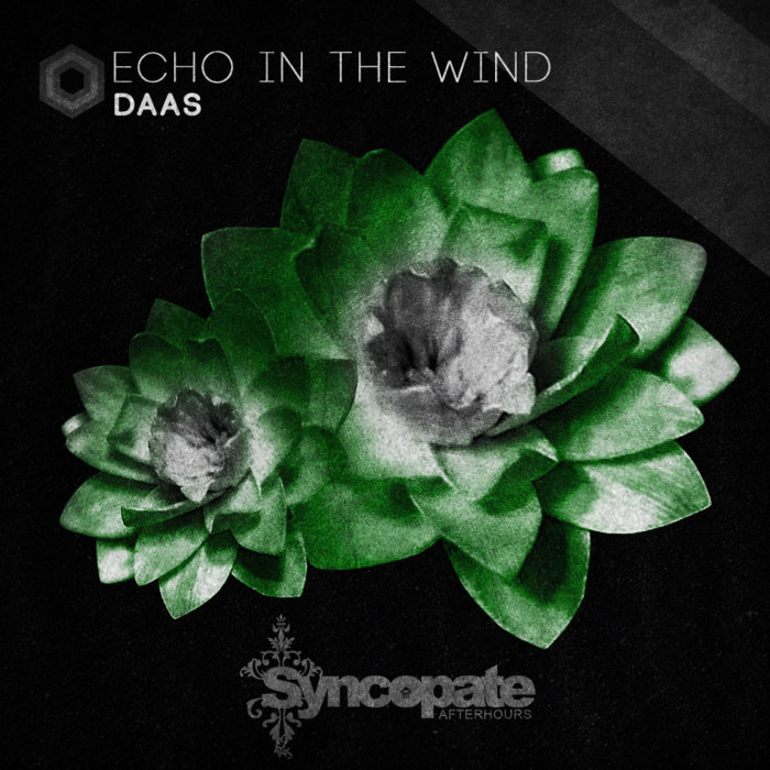 DAAS - Echo In The Wind