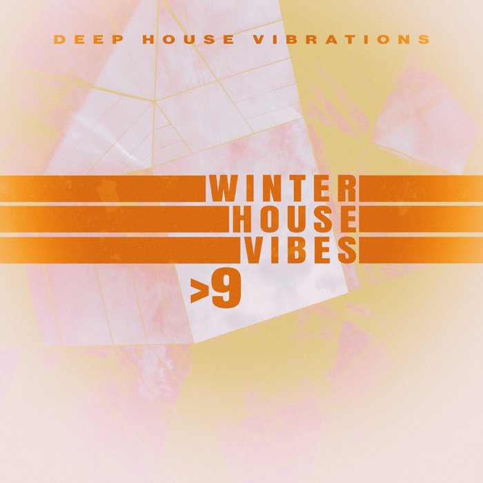VARIOUS - Winter House Vibes >9