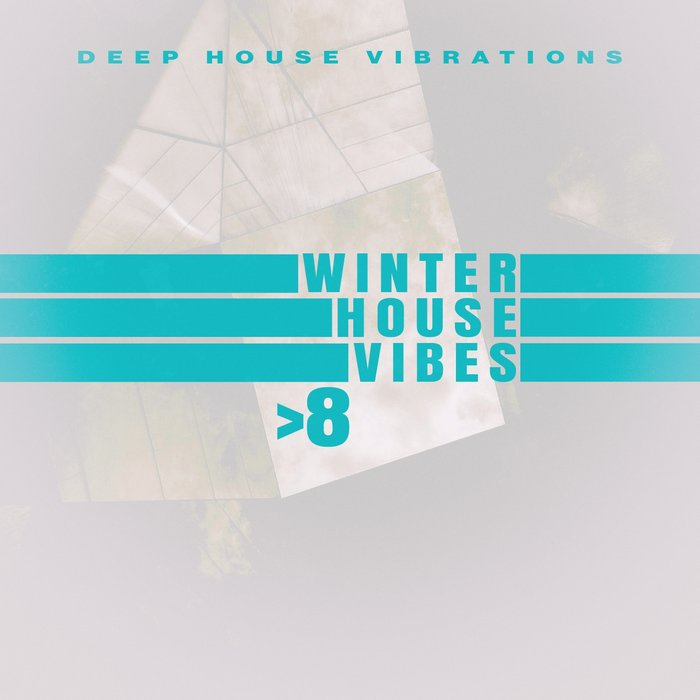 VARIOUS - Winter House Vibes >8